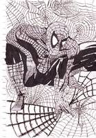 Webbed Spiderman