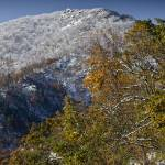 """Fall Snow on Skyline Drive, VA"" by BrendanReals"