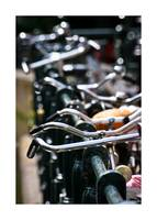 Handlebars and Bicycles Color