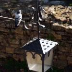 """Pigeon Lantern"" by raetucker"
