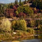 """Toscana"" by raetucker"