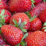 """Close up of the strawberry"" by igorsin"