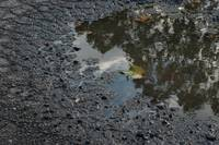 Reflect Puddle