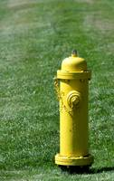 Prevention: yellow fire hydrant.
