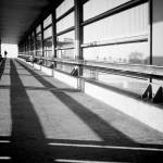 """Silhouette"" by manusferrea"