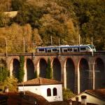 """Tuscan Train"" by raetucker"