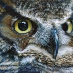 """Dark Owl"" by CarlaKurtArt"