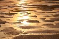 Golden Sands Beach Abstract