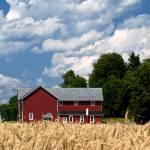 """""""Red Barn"""" by woolleybear"""