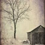 """""""Dead of Winter"""" by woolleybear"""