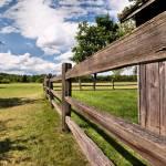 """""""Fence"""" by woolleybear"""