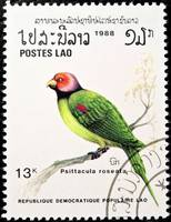 Blossom-headed Parakeet bird stamp.