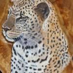"""""""leopard"""" by csjones"""