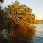 """Autumn on the Indian River"" by LauraD"