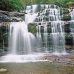"""Liffey Falls"" by Leksele"