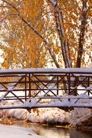 Snowy Autumn Walking Bridge