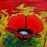 """Crimson Poppy"" by Colene11"