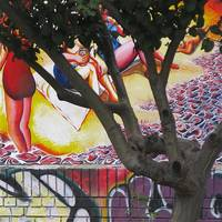 Woman in Tree with a Can of...?