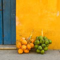 Fresh coconuts in the street of Cartagena, Colombi