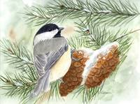 Chickadee in the Pines