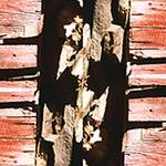 """Barn Wood Bindu"" by ralphnelsen"