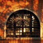 """""""Window Light"""" by raetucker"""