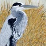 """""""Heron"""" by SteveStAmour"""
