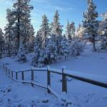 """Winter Sunrise In Meadow Glen, Big Bear Lake, CA"" by KerstPhoto"