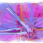 """Pink Wheel"" by DaveScott"