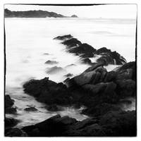 Point Lobos 1