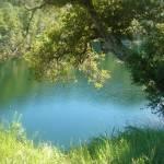 """Lake Phoenix Marin County  MichaelOlsen/ZorkMagazi"" by ZorkMagazine"