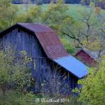 """Back Of The Barn"" by bettynorthcutt"