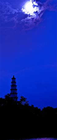 Night Moon over Pagoda