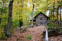 1800's cabin in the woods (landscape)