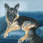 """German Shepherd Angus"" by mozache"