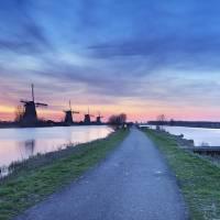 Windmills at sunrise Art Prints & Posters by Cynthia Irvine