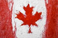 The Maple Leaf