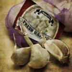 """Garlic Buds"" by Jongarrett777"