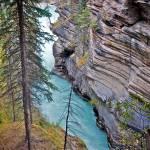 """""""Athabaska Falls"""" by lynnharmstrong"""