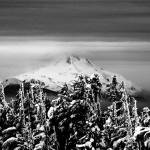 """""""Mt Jefferson_From Timberline Lodge"""" by barbsummering"""