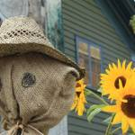 """Scarecrow and Sunflowers"" by mojorider2"