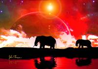 Elephants among the stars