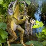 """Frog saxephon player"" by Unique_designs"