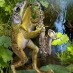 """Frog saxephon player"" by Unique_designs"