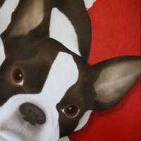 French Bulldog Art Prints & Posters by Terri Meyers