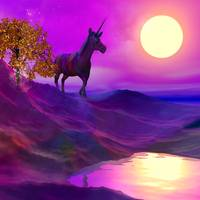 Unicorn in Fairyland