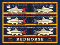Respect the Redhorse Poster