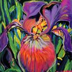 """Purple Iris"" by BeaconArtWorksCorporation"