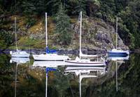 4 Sailboats in Coopers Cove, Sooke, BC