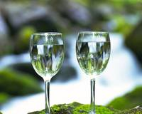 Two-Wine-Glass-Nature-1-1280x1024